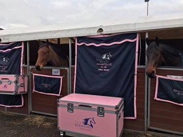 Pink Stable Apparel